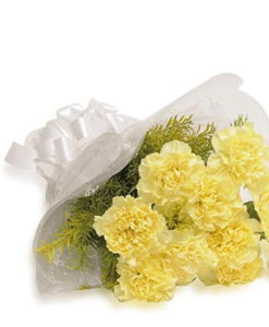 BF Yellow Carnation Flowers