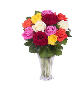 BF Mix Roses Bouquet