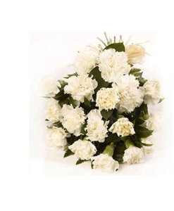 BF White Carnation Bouquet