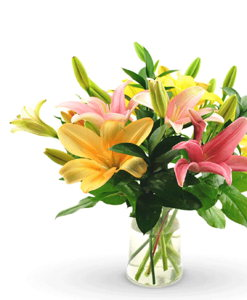 BF Mix lily Bouquet