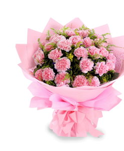 BF Perfect Pink Carnations