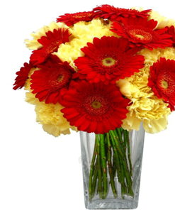 BF Gerbera & Carnation Bouquet