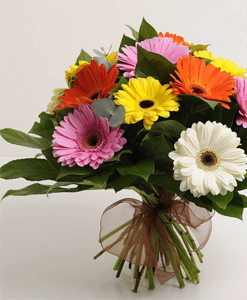 BF Friendly Gerbera Bouquet