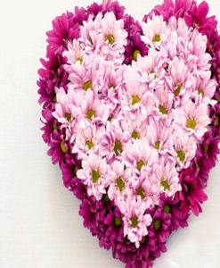 BF Heart Shape Gerberas Arrangement
