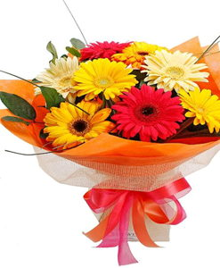 BF Special Mix Gerberas Bouquet