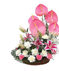 BF Mixed Exotic Flowers Basket
