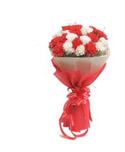 BF Red & White Carnations