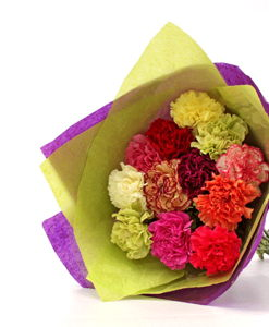 BF Special Mix Carnations