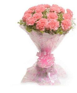 BF Pink Carnation Bouquet
