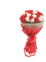hf Hyderabad Florists Red & White Carnations