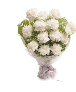 BF White Carnation Flowers