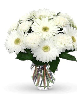 BF White Gerbera & Carnation Bouquet