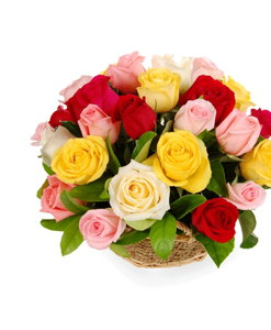 BF Mix Roses Basket Arrangement