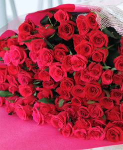 BF Beautiful Red Roses