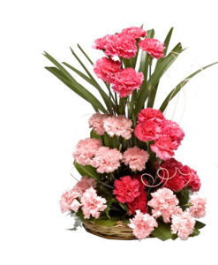 BF Mix Carnations Basket