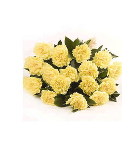 BF Dozen Yellow Carnations