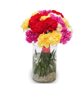 BF Mix Carnation Bouquet