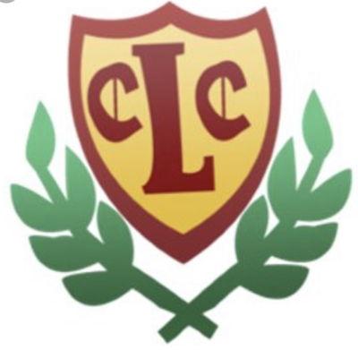 Lintz cricket club Logo