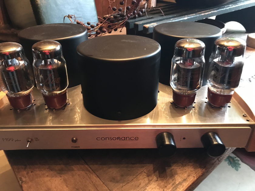 Opera Consonance M 99+ Integrated Tube amplifier