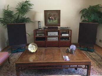echolane's Living Room System