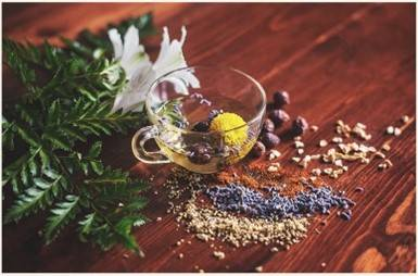 Ayurvedic herbs aesthetically spread out on a table and are being used for a skin tonic - only the best skincare brands use these herbs>