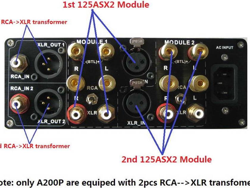 ICEpower 125ASX2 --- A200B Mono 550w x 2/ch & SE Amp