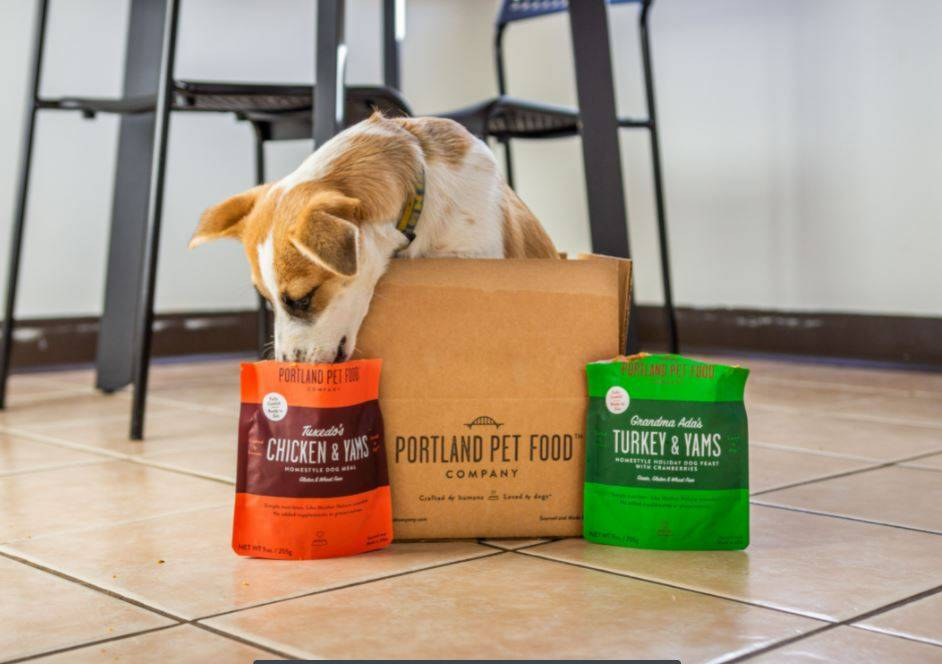 A puppy in a dog food delivery box licking a wet dog food from the pouch.