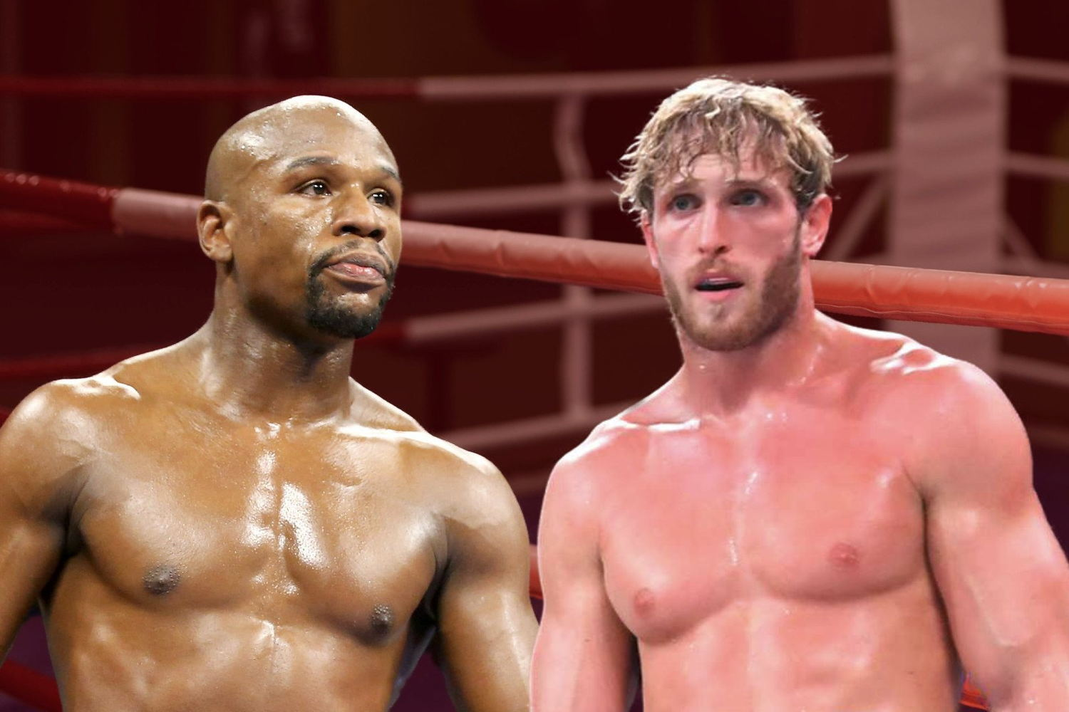 Boxing Odds and Picks: Floyd Mayweather vs Logan Paul