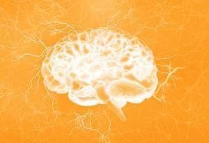 neurologie elevant