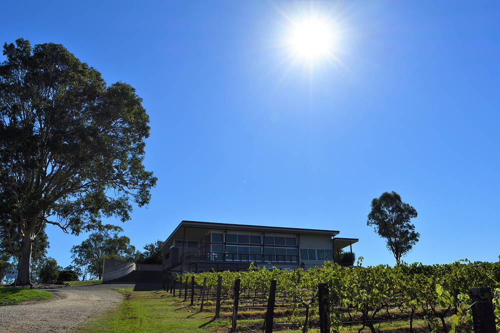 Beautiful day at Lambloch Estate Hunter Valley Wineries