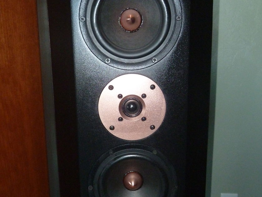 Tyler Acoustics Decade D1, Cherry finish Relisted