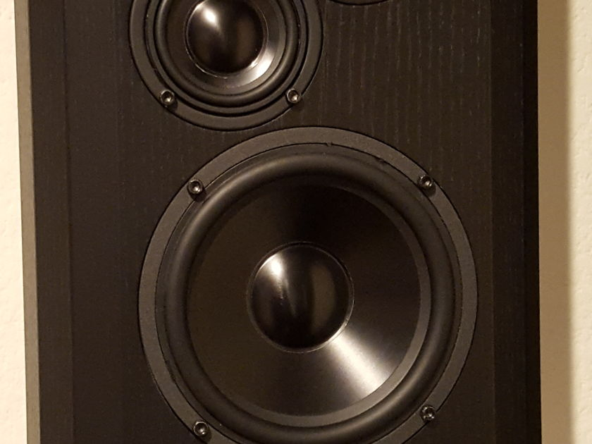 Bryston Model T On-Wall (TOW) High Performance On-Wall Speakers - Black Ash Wood (Pair)