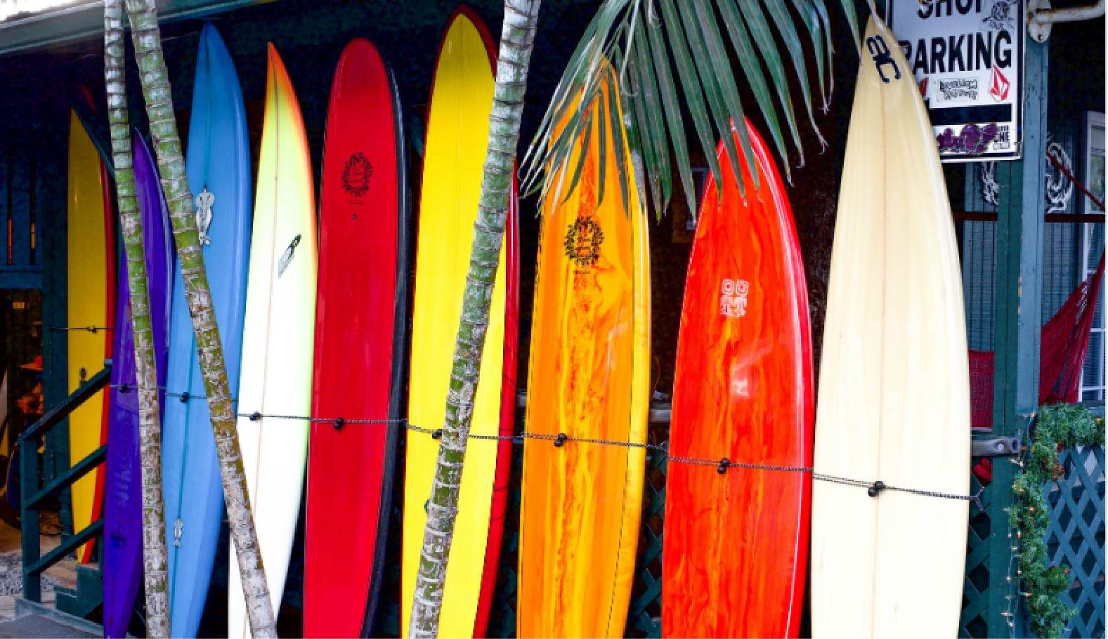 Photo de plusieurs planches de surf, des différentes tailles et différents shape posé devant un surfshop. Il y a des Gun surfboard, des longboards et des malibu.