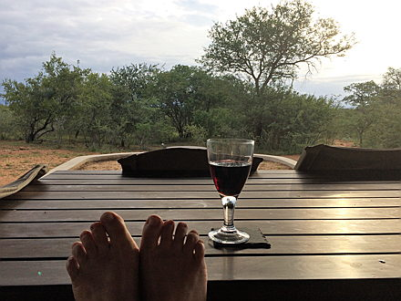 Hoedspruit - image of feet and wine glass with bush as background