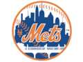 ARE YOU GOOD ENOUGH TO PLAY FOR THE METS?!