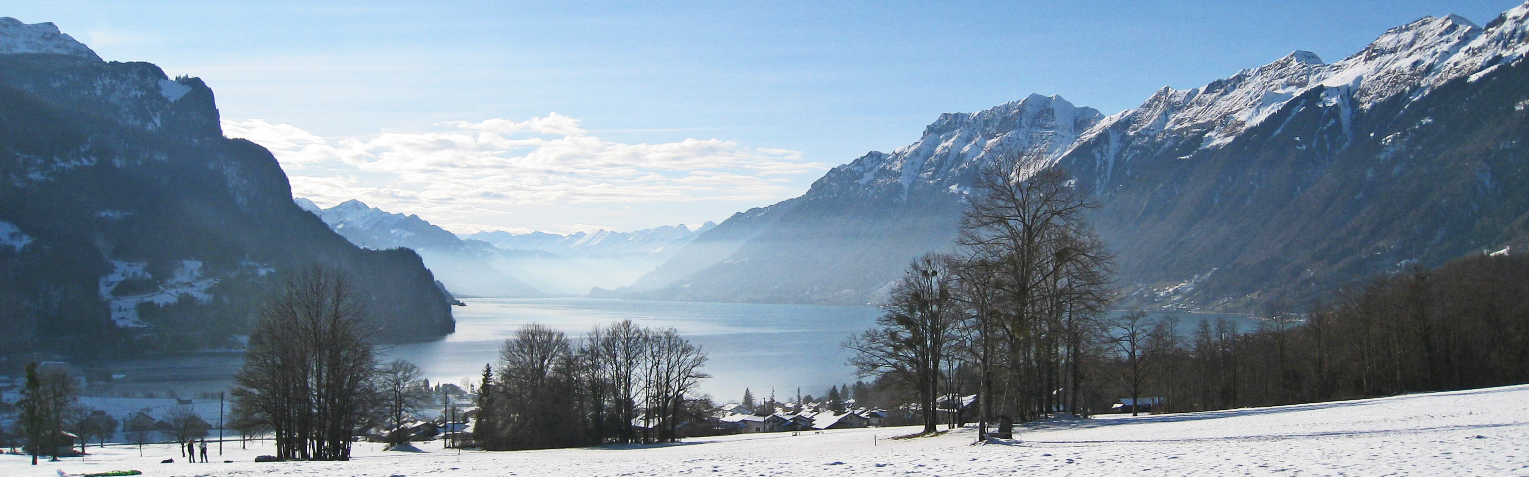 Immobilien in Interlaken - Brienz (5).jpg