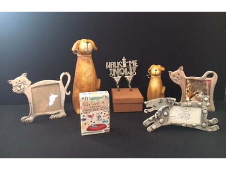 Cat & Dog Lover's Package