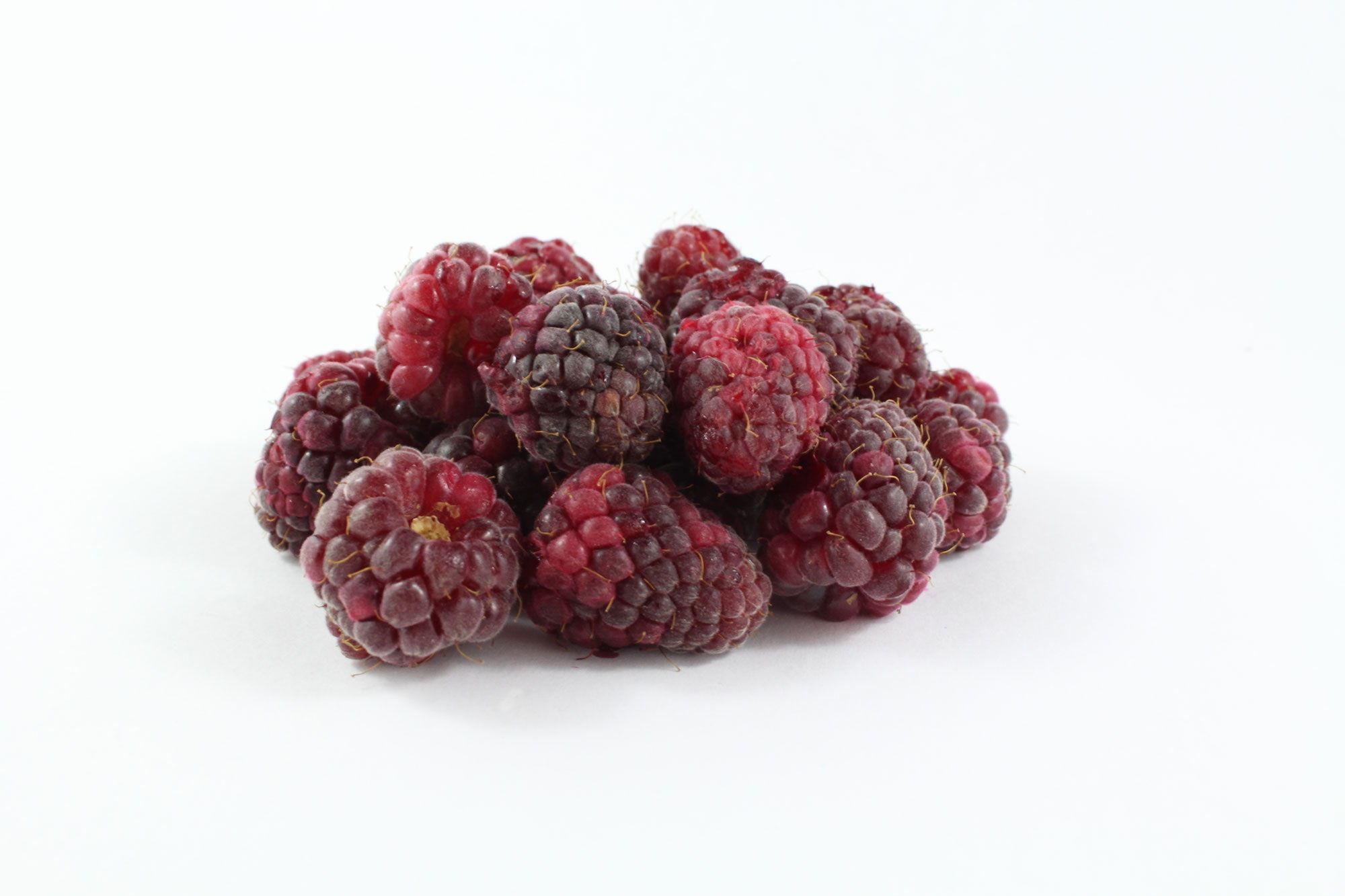 Loganberries - Souto Farms Fresh BC Fruit