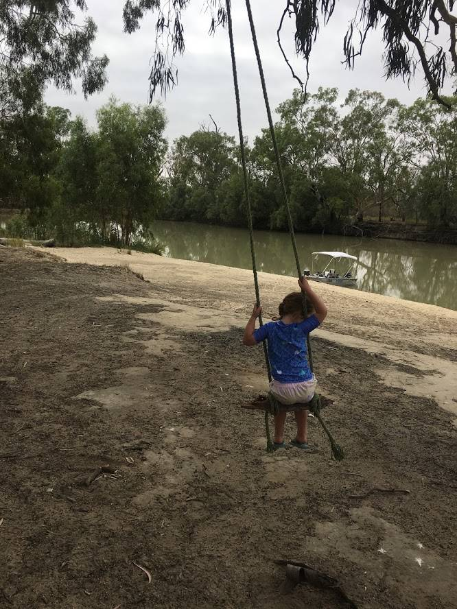 Rope swing in gumtree at the Murray River