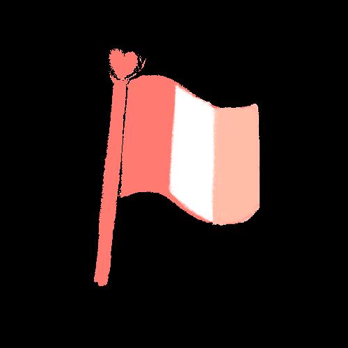 drapeau made in France