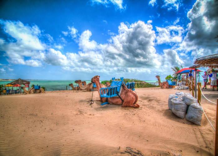 O que fazer em Natal,Praia de Pipa (Tibau do Sul) Foto 4