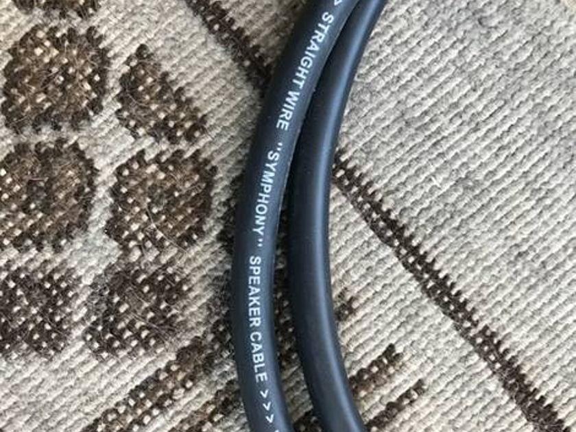 Straightwire Symphony - 5' Bi-Wire Single Speaker Cable