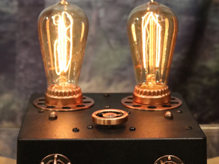 Fleawatt Audio The Edison Lamp Amp Integrated Amp