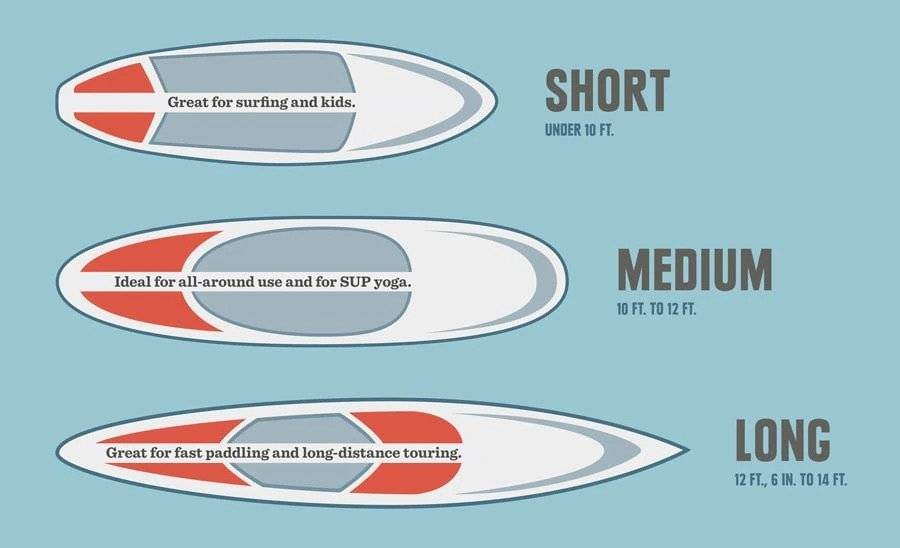 different sizes of paddle boards for different purposes