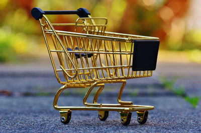 Why To Choose PHP Shopping Cart?