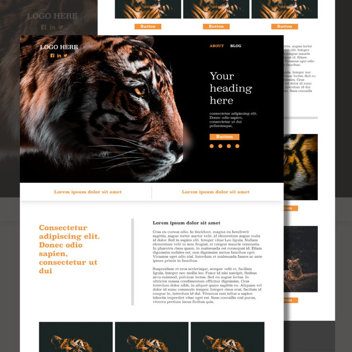 Tiger template's featured image