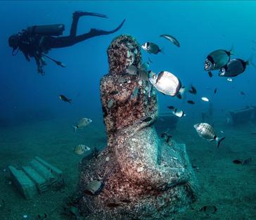 Дайвинг в подводном музее