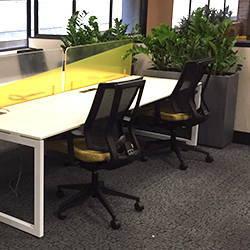 Happy Work Environment 8