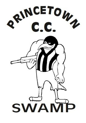 Princetown cricket club Logo