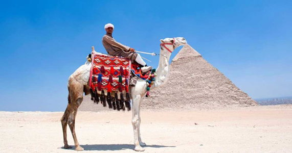 quiz-how-well-do-you-know-egypt